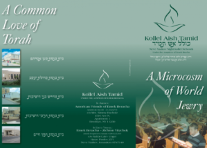 Kollel Aish Tamid Brochure